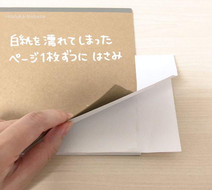 20161011_13_oraphan_03