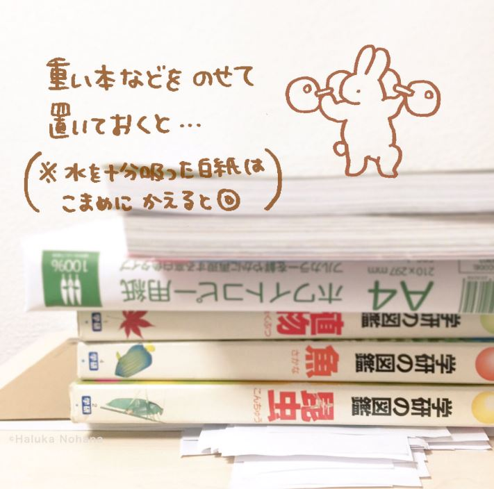 20161011_13_oraphan_04
