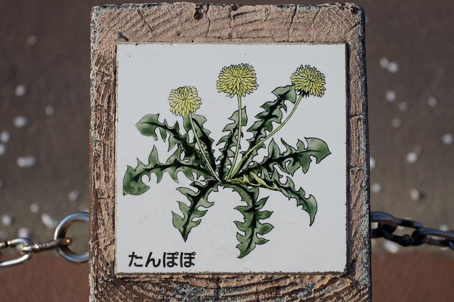 20170210_08_RiangSupod (38)